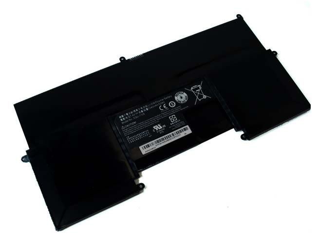 C1-X1-d17 battery