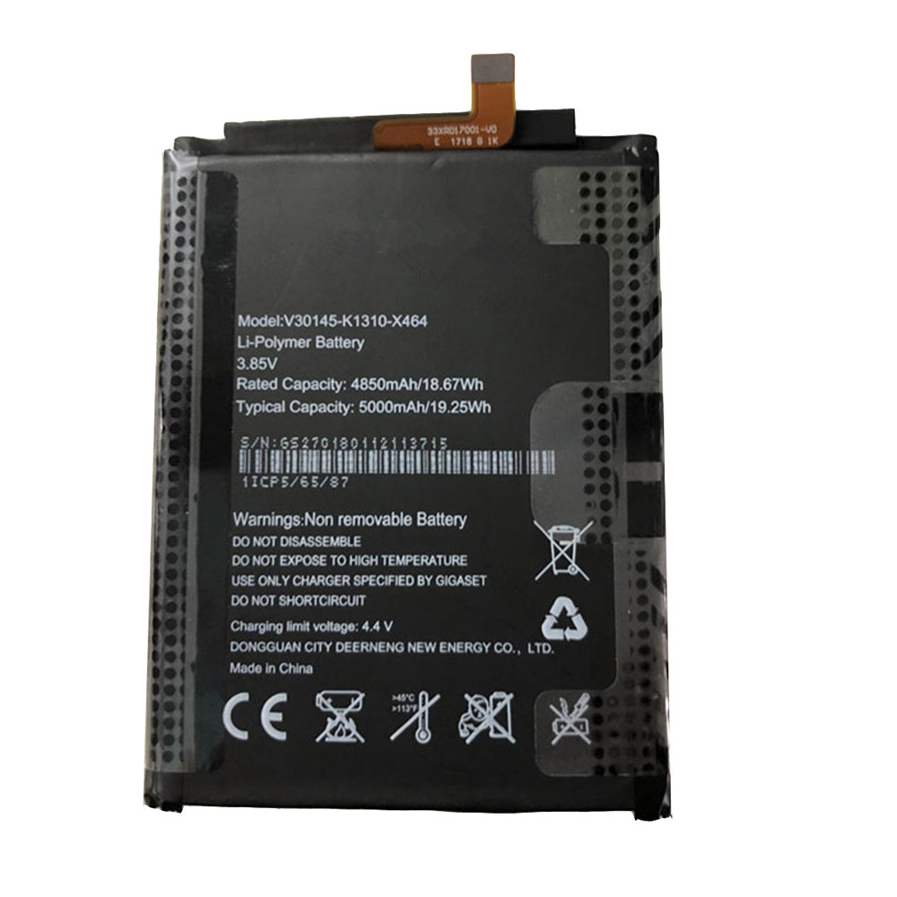 V30145-K1310-X464